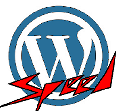 speed up my wordpress