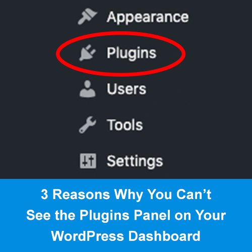 Why Cant I See My Plugins in My WordPress Dashboard